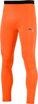 Puma FTBLNXT tight Heren Oranje
