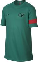 Dry CR7 Academy shirt
