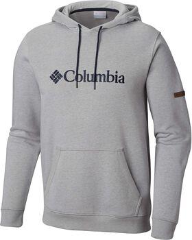 Columbia Basic Logo II hoodie Heren Grijs