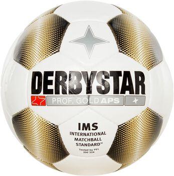 Derbystar Prof Gold Wit