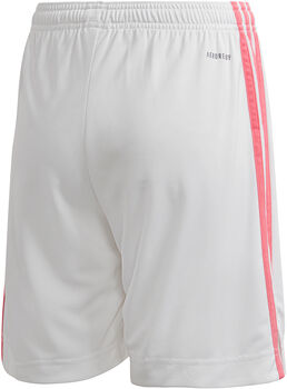 adidas Real Madrid Thuisshort 20/21  Wit