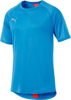 Puma FTBLNXT shirt Heren Blauw