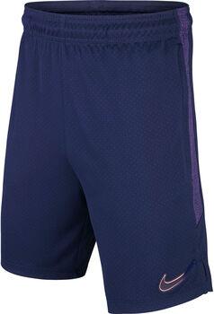 Nike Tottenham Hotspur Dri-FIT short Jongens Blauw