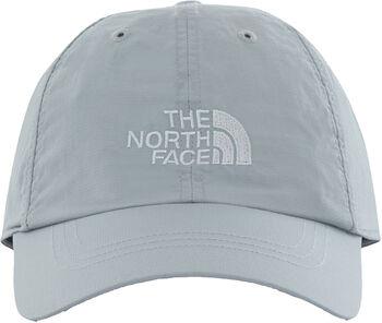 The North Face Horizon pet Heren Grijs