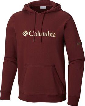 Columbia Basic Logo II hoodie Heren Multicolor