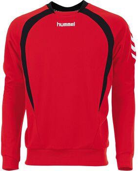 Hummel Team longsleeve shirt Heren Rood