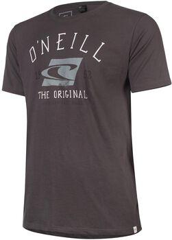 O'Neill The Surf brand shirt Heren Grijs