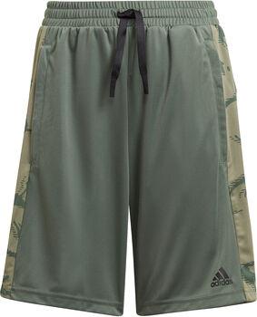 adidas Designed To Move Camouflage Short Jongens Groen