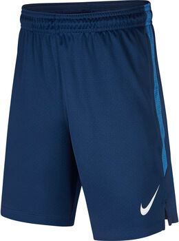 Nike Dry Stike short Blauw