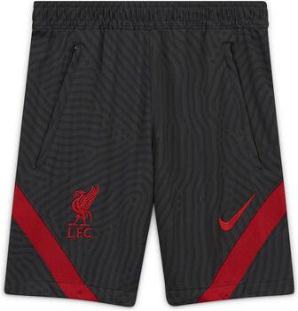 Nike Liverpool FC Strike kids short 20/21 Jongens Zwart