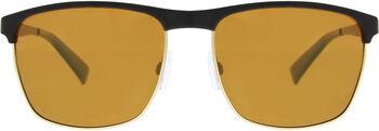 Sinner Fairview zonnebril Heren Zwart