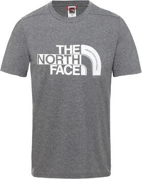 The North Face Extent P8 Logo shirt Heren Grijs
