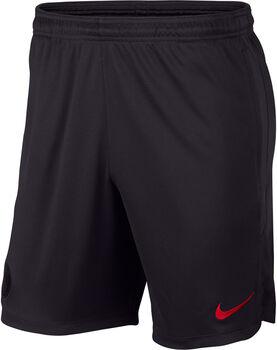 Nike PSG  Dry Strike short Heren Zwart