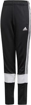 adidas 3-Stripes AEROREADY Primeblue Broek Zwart