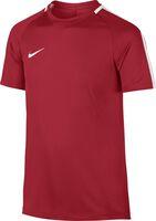 Dry Academy jr voetbalshirt