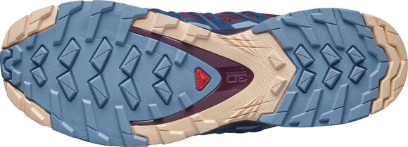 XA Pro 3D V8 wandelschoenen