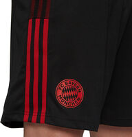 FC Bayern München Tiro trainingsshort 21/22