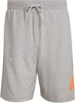 adidas Sportswear Lichtgewicht Short Heren Grijs
