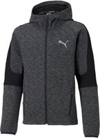 Evostripe Full-Zip hoodie