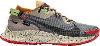 Nike Pegasus 2 Gore-Tex trailschoenen Heren Zwart