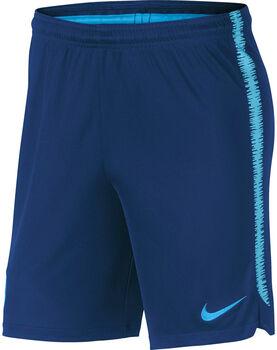 Nike Dry FC Barcelona Squad short Heren Blauw