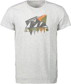 Icepeak Dickson t-shirt Heren Grijs