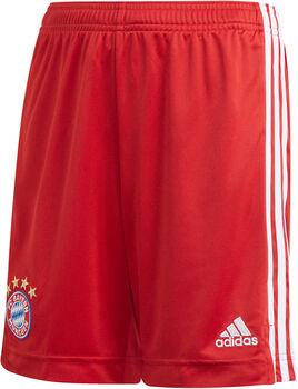 adidas FC Bayern München kids thuisshort 2020/2021 Rood