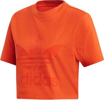 ADIDAS Logo Cropped shirt Dames Oranje