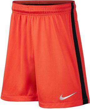 Nike Neymar Dry Squad jr short Jongens Oranje
