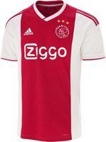 Ajax Thuisshirt 2018-2019