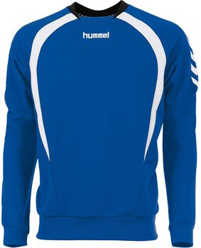 Hummel Team longsleeve shirt Heren Blauw