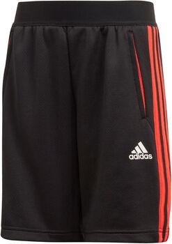 adidas P 3S short Jongens Zwart