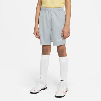 Nike Dry Academy 21 broek Jongens Grijs