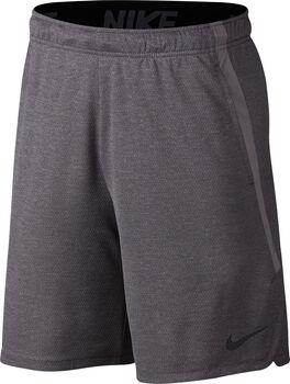 Nike Dry 4.0 short Heren Grijs