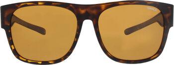 Sinner Shefford zonnebril Bruin