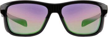 Sinner Whitepass zonnebril Zwart