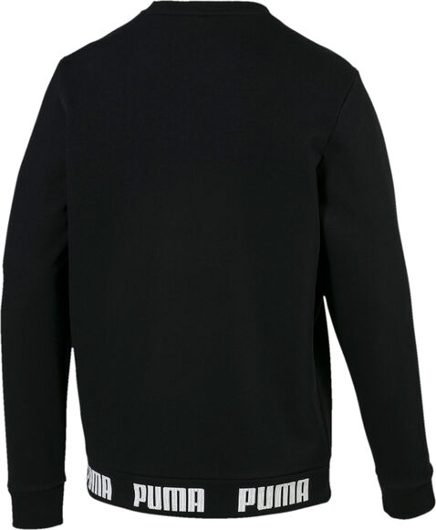 Amplified Crew sweater