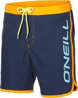 O'Neill Frame Logo short Heren Blauw