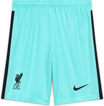 Nike Liverpool Stadium kids thuis/uit short 20/21 Groen
