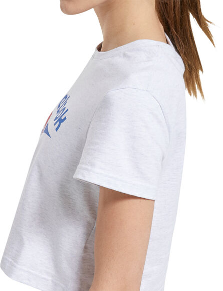Classics Big Logo t-shirt