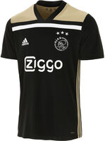 Ajax Away jr wedstrijdshirt 2018/2019