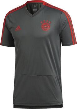 ADIDAS FC Bayern München Training shirt Heren Zwart