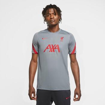 Nike Liverpool FC Strike top Heren Grijs