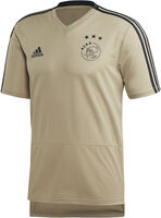 Ajax Amsterdam Training shirt