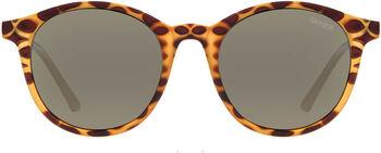 Sinner Lomond zonnebril Dames Bruin