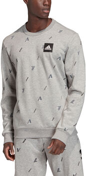 adidas Must Haves Graphic sweater Heren Grijs