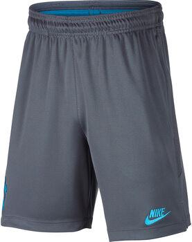 Nike Tottenham Hotspur Dri-FIT short Jongens Zwart