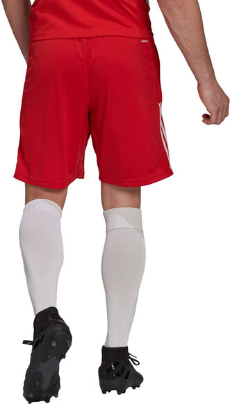 Ajax Tiro trainingsshort 21/22