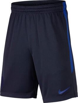 Nike Chelsea FC Dry Strike short Jongens Blauw