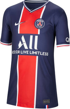 Nike Paris Saint-Germain 2020/2021 Stadion Thuisshirt Blauw
